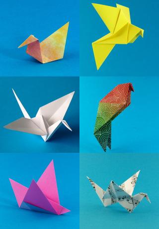 Origami Birds Gallery